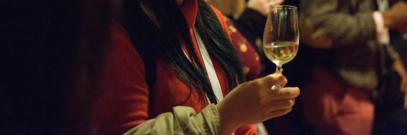 img_santé_de_la_vigne_et_qualité_du_vin