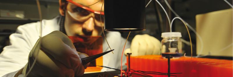 recherche excellence université centre physique quantique allemand france